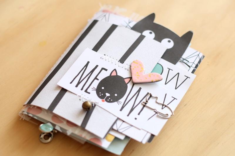 Minialbum cat cari01