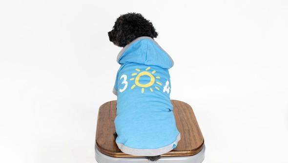 116053 doghoodie30ablue back1 slider original
