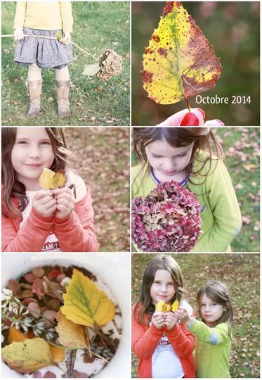 Collage octobre