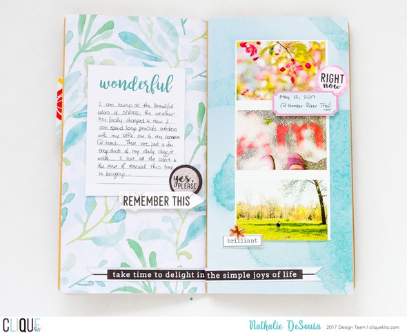Ck nathalie desousa june2017 my personal journal 2 original