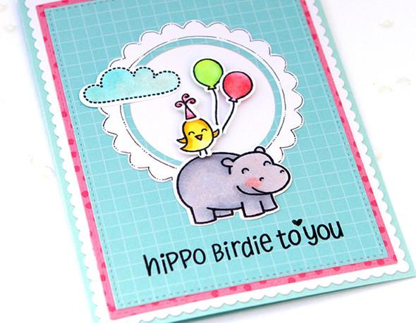 Hippo birdie close up