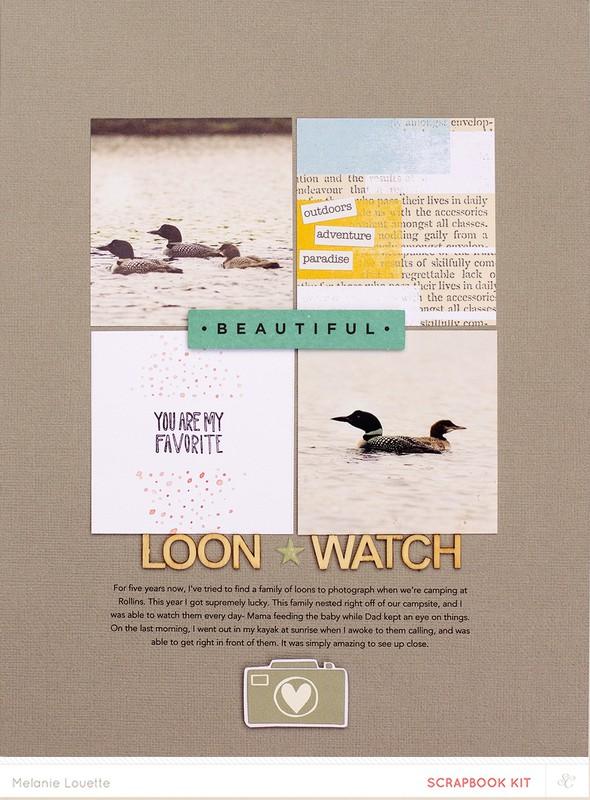 Loon watch web final