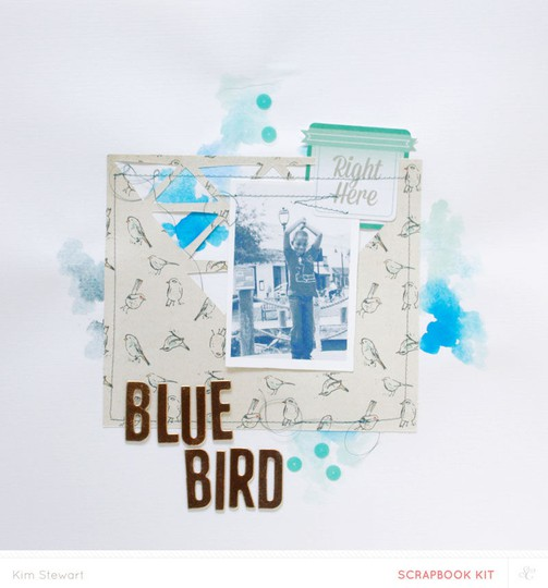 Sc bluebird jan kit