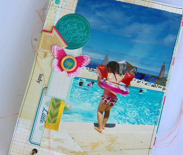 Mini album signe ex%c3%a9rieur de bonheur marie nicolas alliot 20