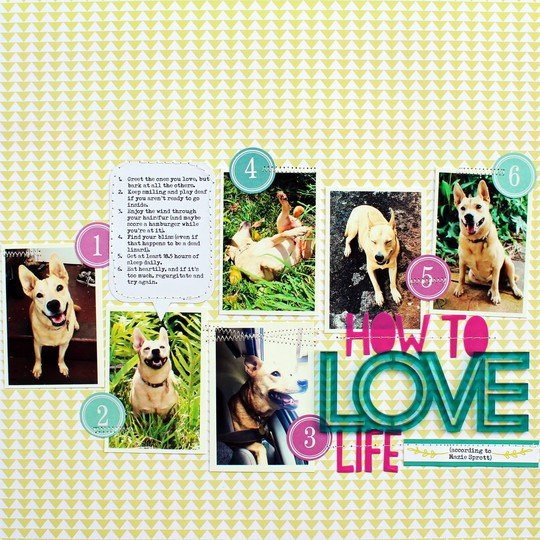 Love life jill
