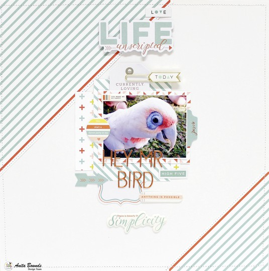 Hgey mr bird layout by anita bownds pink fresh studio %25281%2529 original