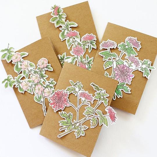 Floralcardset web original