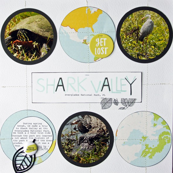 Sharkvalley1