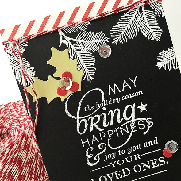 Stylish sentiments holiday sneak danielle original