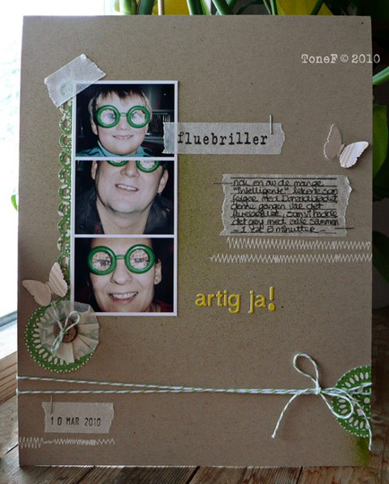 Fluebriller