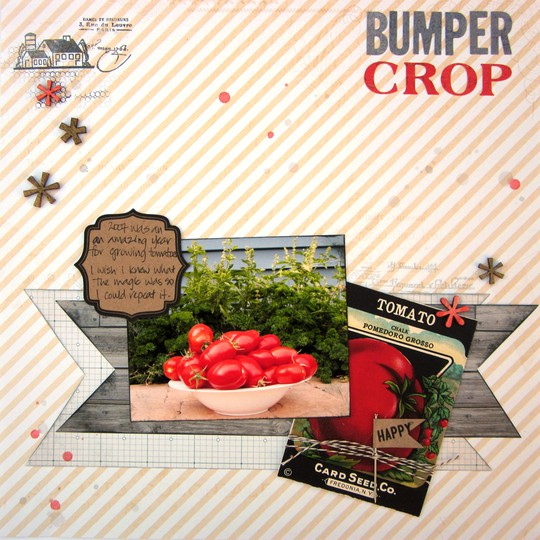 Bumpercrop red