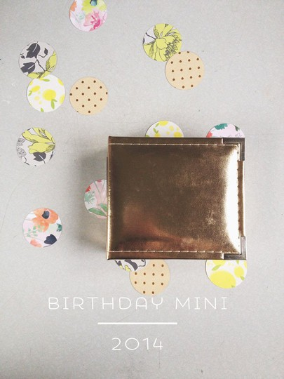 Birthday mini 1