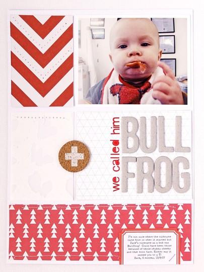 20140329 sc bullfrog