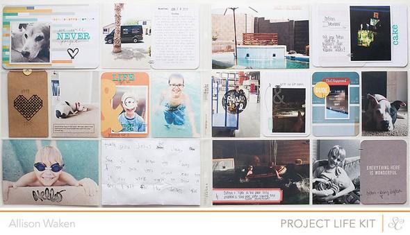 Awprojectlife2013week26 1