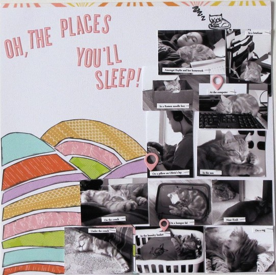 Oh the places you will sleep