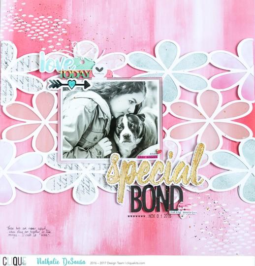 Ck nathalie desousa december 2016 special bond original
