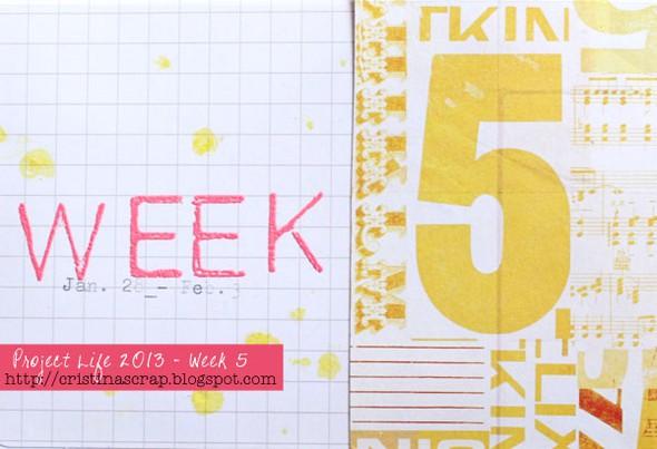 Pl2013 week5det1 web