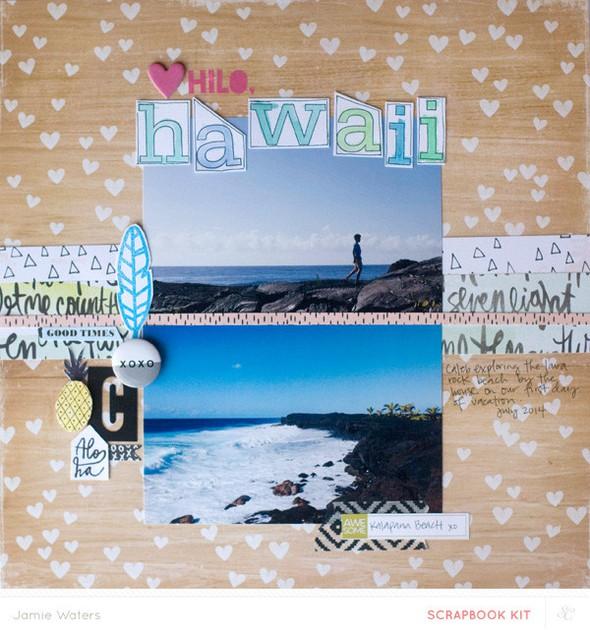 Hawaiikkfull (1)