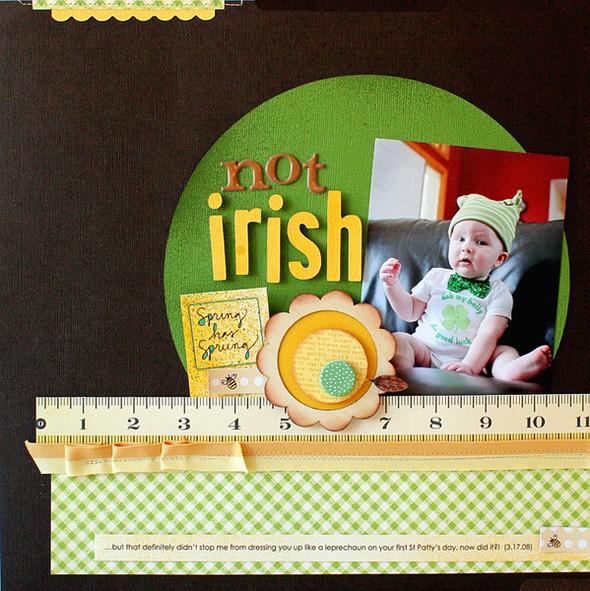 Not irish   susan weinroth