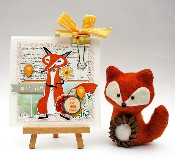 Mliedtke pls fox card