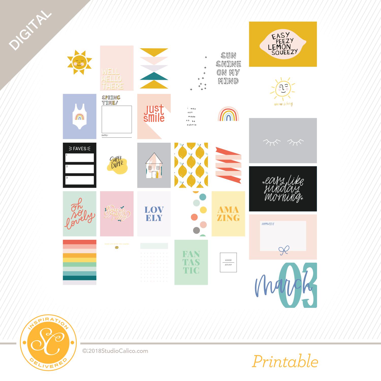 Lucky Charm Digital Printable Main Journal Cards Studio