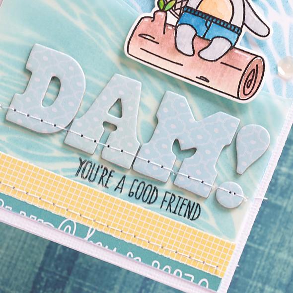 Dam detail 1 original