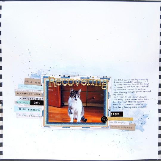 Lfe oct layout4 01 original