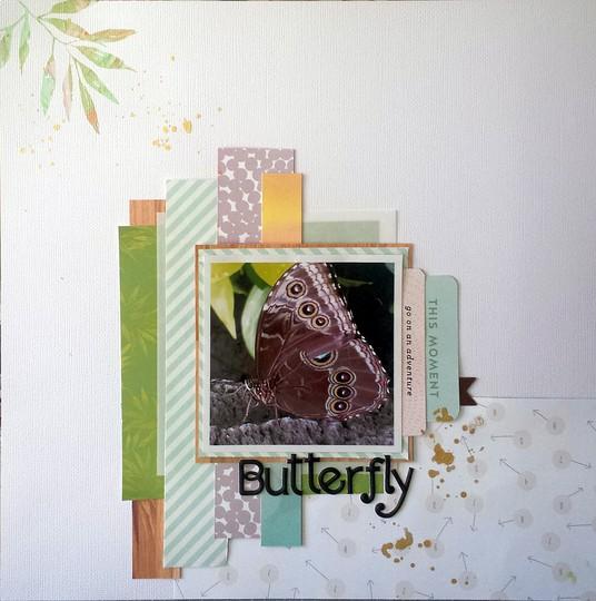 Butterfly 42 v2 original