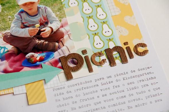 046 picnic3
