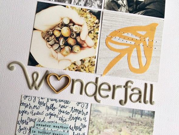 Wonderfall2