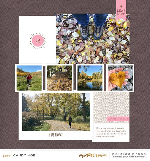 Paislee autumnvibes bycandy original