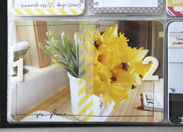 Ae pl2013 wk15 daffodils