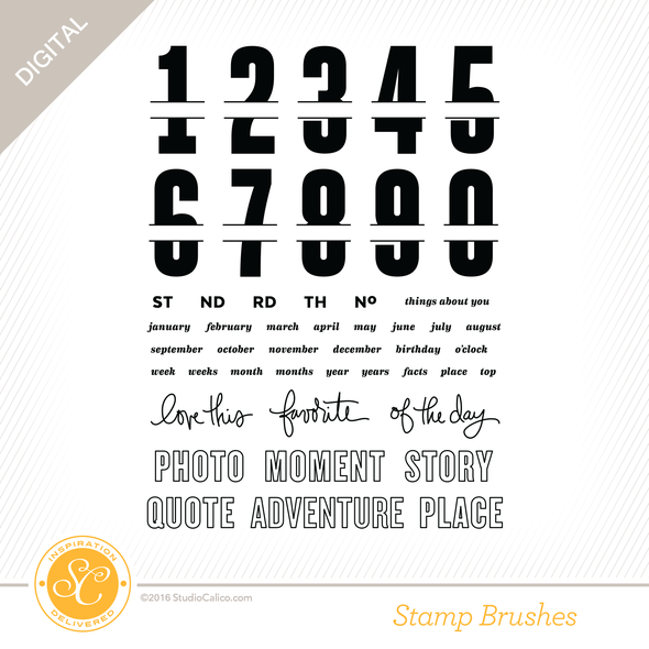 28748 sc sonnet 6x8 stamp by the numbers preview original