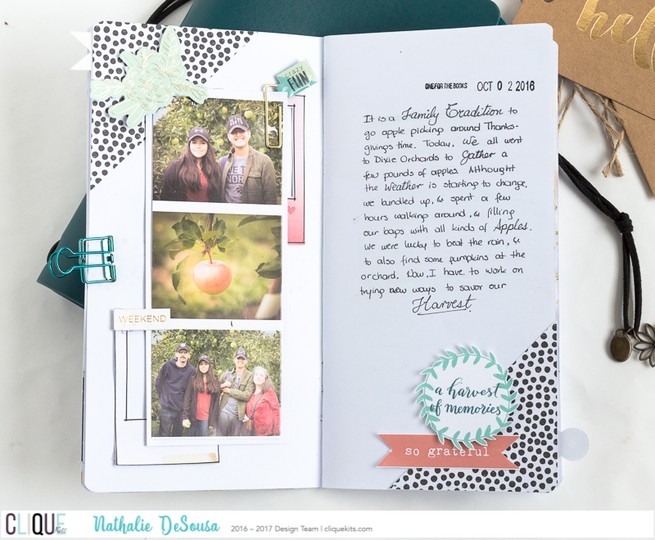 Ck nathalie desousa november2016 traveler notebook 2 original