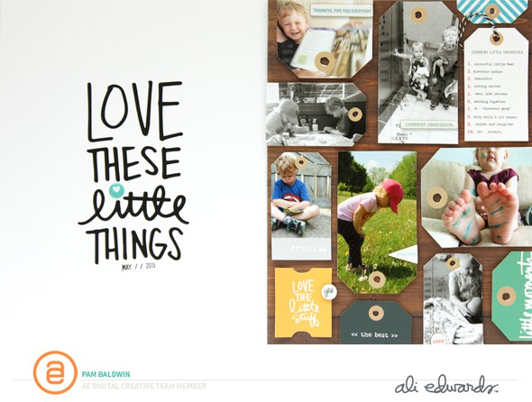 Pbaldwin may6 littlethingsstorykit original