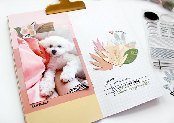 Bpicinich staywonderful notebook addon 03 original