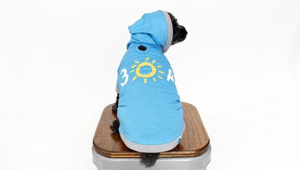 116053 doghoodie30ablue back2 slider original