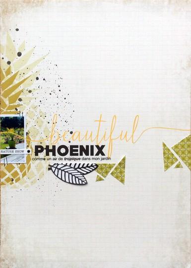 Beautiful phoenix original