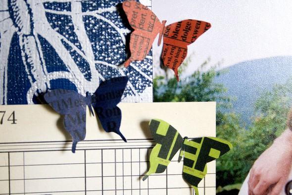 Cherislo butterflies small
