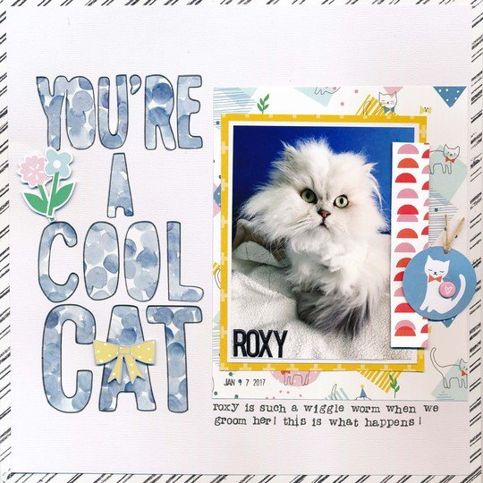 You re a cool cat original