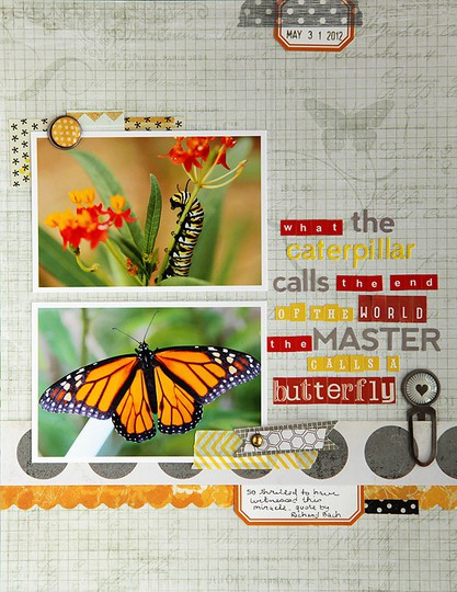 Debduty butterfly