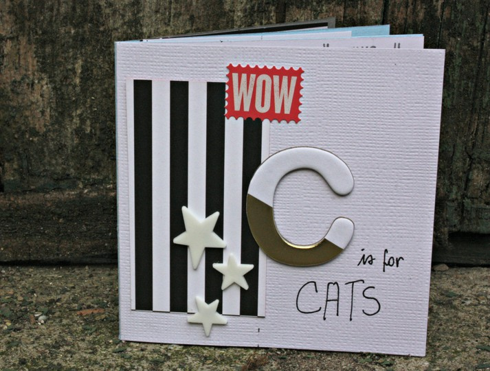 Scjan2016kit album cats %252816 2%2529 original