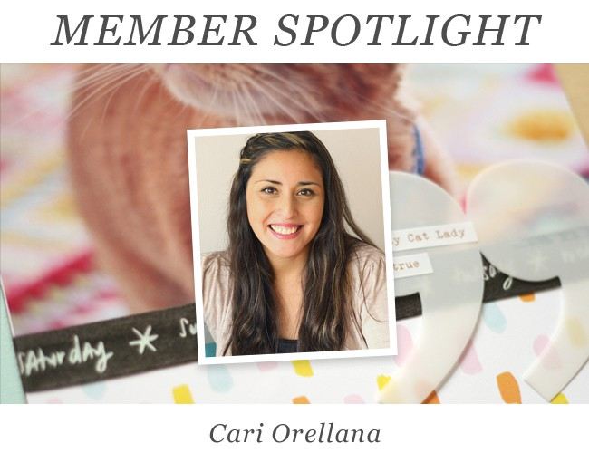 Member spotlight july