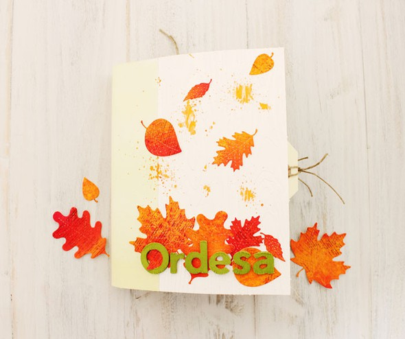 Mini album ordesa 05
