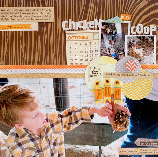 Chicken coop fun   susan weinroth