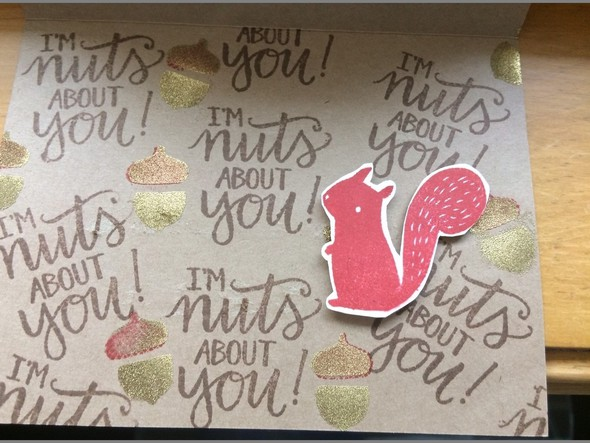 Inside nuts about you original