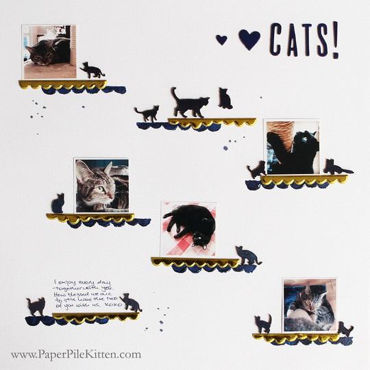 1lovelovecats 1170wmppklr