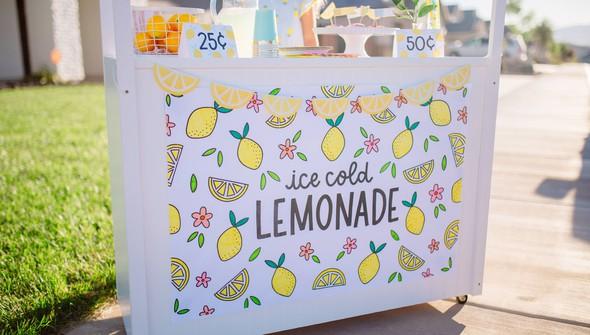 Pp lemonade digital printables 0006 img 1049 original