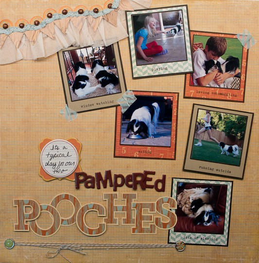 Pampered pooches 1