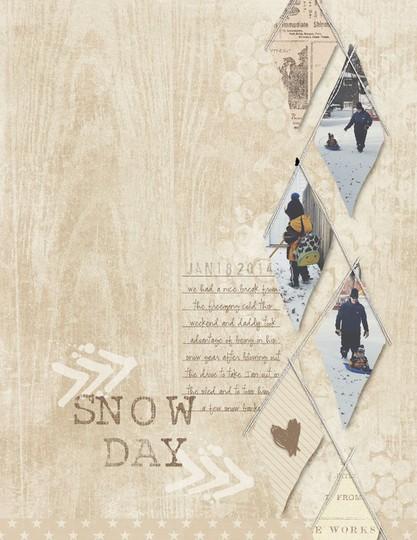 2014 1 18 snowdaysc
